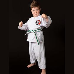 karateacademysydney-mini-classes